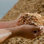 Les biocarburants 3e génération, le futur de la sidérurgie ?