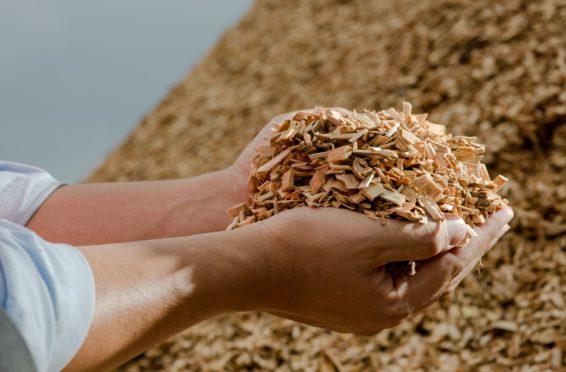 Les biocarburants 3e génération, le futur de la sidérurgie